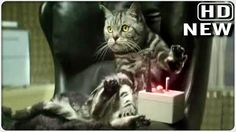 New Cravedale 2012 advert: Cats with thumbs are back !