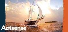 Actisense NMEA 2000 Sensors, and Network Backbone Interfaces. Power Cable, Sailing Ships, Boat, Electronics, Boats, Sailboat