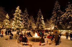 Der hundefreundliche Adventmarkt in Mayrhofen, Zillertal, Tirol  #urlaubmithund #hundefreundlich #weihnachten #advent #christkind #weihnachtsmaerkte #tirol