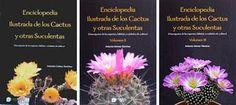Enciclopedia ilustrada de los Cactus y otras Suculentas.