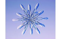 As water vapour starts condensing on its surface, the ice particle quickly     develops facets, which form into different shaped snowflakes depending on     temperature