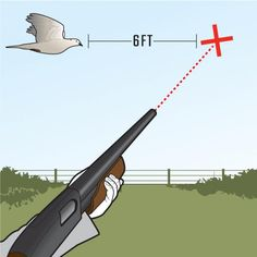 Ten Tips for Better Dove Hunting | Small Game Hunting | Realtree1 inch = 1 ft