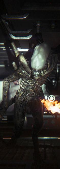 Alien Isolation   Scary Sh*t