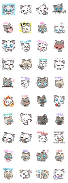 """""""Hoshi & Luna Diary"""" the 6th series. All cat lovers don't miss. Send it to your friends now!."""