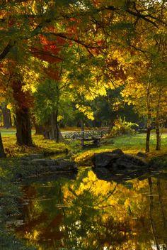 Golden Park, Craiova, Romania photo via cinda - The Voyaging! Beautiful World, Beautiful Places, Beautiful Park, Seen, All Nature, Autumn Nature, Green Nature, Gras, Belle Photo