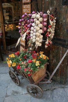 Carretto di fiori in Arezzo, Tuscany, IT