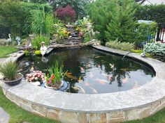 koi pond- nice raised edge to keep the racoons out.