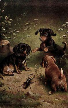 Tres Dachshunds y un escarabajo.  Postal de la vendimia en ebay.com