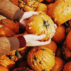 Pumpkin   Halloween is over - that's why I thought I'd post a picture of a Pumpkin. Like throwback or something to Pumpkin season 2015.  #pumpkin #halloween #halloween2015 #seasonisover #season #throwback #throwbackmonday #itsathing #orange #vegetable #hands  #bestfriend #ludwigsburg #festival #kürbisfest #kürbis #pumpkinfestival #daytrip #autumn #colours #jacket #stuttgart #0711 #schwabenland #badenwürttemberg #germany #traveltogermany by vbcara