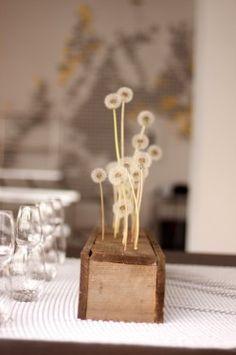 dandelion puffs as flower arrangements
