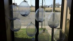 Balloon greenhouse, can't wat to try this!
