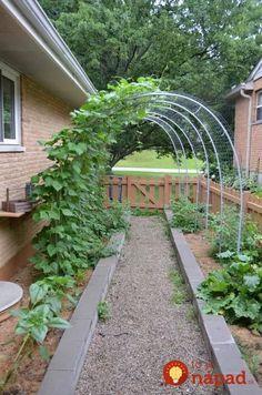 Creative Gardening Ideas To Inspire You - Garden Types Garden Arbor, Garden Shrubs, Garden Beds, Raised Vegetable Gardens, Vegetable Garden Design, Vegetable Gardening, Garden Types, Amazing Gardens, Beautiful Gardens