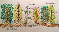 Ontwerp mooie gemengde haag voor beschutting biodiversiteit en insecten #groen #geluk #eigenwijs #blij