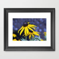 Black-eyed Susan Framed Art Print by Laura George - $32.00