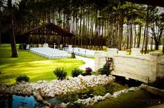 The tall trees provide for a dramatic setting... and doubles as a natural way of providing shade for the ceremony area. [Hidden Springs by The Springs Events]