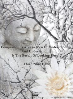 Compassion is always born of Understanding, and Understanding is the result of looking deeply ⊰♡⊱ Thich Nhat Hanh