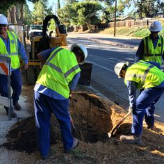 Public Works tree planting