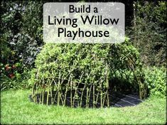 How to Grow a Child's Living Den or Playhouse With Willow