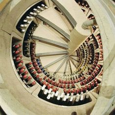 This is a spiral staircase wine cellar from a trap door in the kitchen! Such an amazing idea!