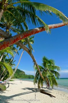 Coral Coast beach,Fiji.