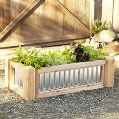 Galvanized Raised Bed #williamssonoma