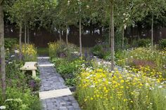 Summer Fairy Tale from RHS Flower Show Tatton Park 2013 - Google Search