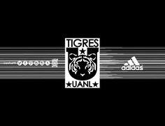 @CLUB TIGRES • 110314CTG(2) LigraficaMX