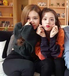 chaesoo Kpop Girl Groups, Korean Girl Groups, Kpop Girls, Lisa, Blackpink Memes, Velvet Fashion, Park Chaeyoung, Blackpink Jisoo, Kim Jennie