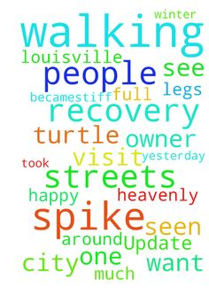 Update on Spike -  Heavenly Father we want to thank you for the full recovery of Spike the turtle. Yesterday the owner took him walking again the streets of Louisville. He walked for over 3 miles. One of his legs becamestiff because he had not been walking much during the winter. He is doing well in his recovery. People around town are happy to see him out walking again. Thank you Father for his fullrecovery, and that Spike will be seen walking the streets again. Many people look for him…