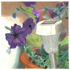 Another project that I completed in an online colored pencil class class. I will be using the original in a mixed media project. Class Class, Colored Pencils, My Design, Mixed Media, My Arts, Shops, Backyard, Flowers, Projects