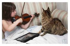 Thula, a Maine Coon, is a therapy cat for Iris, a little girl with autism. With Thula around, Iris has become more verbal and open.