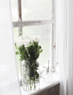 White roses Pinterest: Bl.indian