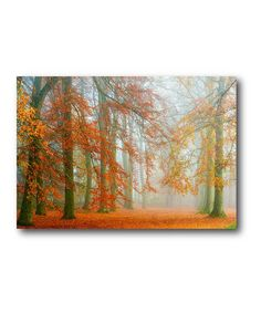 Autumn with Blue Sky Wrapped Canvas #zulily #zulilyfinds