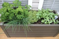 Herb Garden – Clover and Thyme Indoor Planters, Herb Garden, Herbs, Plants, Indoor Window Boxes, Herbs Garden, Herb, Plant, Planets