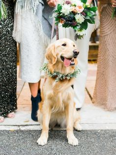 Why These Two Brides Invited Wedding Crashers to Their Wedding