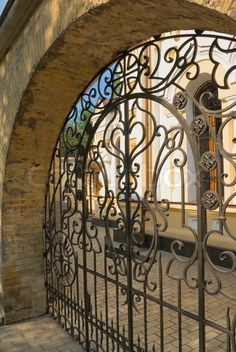 Beautiful gothic iron gate in Pushkin park.