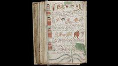 Voynich manuscript in full.