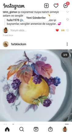 European Style, European Fashion, China Painting, Painted Porcelain, Cantaloupe, Ideas, Food, Tejido, Fruits And Vegetables
