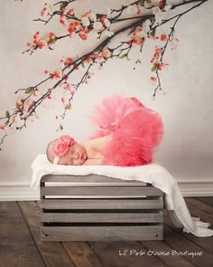 Hey, I found this really awesome Etsy listing at https://www.etsy.com/listing/177836851/coral-tutu-and-headband-newborn-tutu