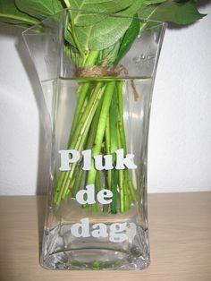Vaas met tekst, Nederlands