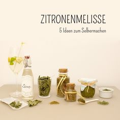 Zitronenmelisse: 5 Rezeptideen zum Selbermachen 5 recipe ideas for the lemon balm: syrup, sugar, pesto, tea and herbal mixture to make your own. Pesto, 5 Recipe, Recipe Ideas, Ginger And Honey, Lemon Balm, Food Articles, Eat Smart, Refreshing Drinks, Party Snacks