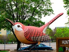 World's largest wren -    		Wren are amoung the world's smaller birds. A Kansas radio station  (WREN) had this bird made and placed on top of the broadcast building  in the 1930s. IT was purchased by a non-profit group , restored and  placed in Topeka's Huntoon Park in the 1990s.