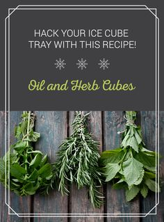 Ice cube trays do more than make ice. Use it to make these oil and herb cubes to use for salad dressings, grease a pan, or simply keep your herbs fresh! Click the pin for the oil and herb ice cube tray recipe.