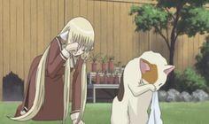 chii mimicing a cat