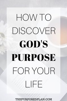 4 ways that the bible tells you how to find your purpose in life. Learn what God has in store for your life and how to get on your right path. Finding Purpose In Life, Finding God, Life Purpose, Finding Yourself, Midnight Prayer, Find Your Calling, Job Motivation, Purpose Quotes, Find My Passion
