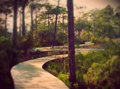 WaterColor - Scenic 30A Real Estate - GO TO THE BEACH Real Estate - Boardwalks Abound