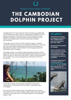 Volunteer / Internship with Dolphin Research in Cambodia