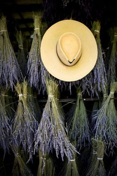 A Day To Myself - Drying Lavender