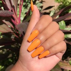 ✧ Pinterest: @tani00 Summer Acrylic Nails, Cute Acrylic Nails, Acrylic Nail Designs, Orange Acrylic Nails, Manicure Y Pedicure, Gel Nails, Coffin Nails, Manicures, Nail Polish