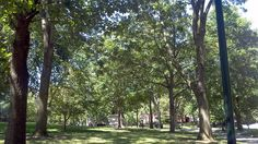 Good Day to Be Outside by Tom Ipri, via Flickr